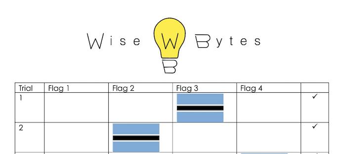 Flag Data 2